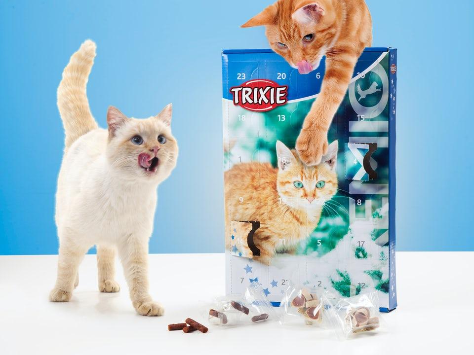TRIXIE Adventskalender für Katzen